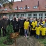 Zasadzenie pamiątkowego drzewa przez Burmistrzów i Radnych Gminy Kluczbork