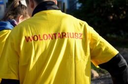 Sadzenie żonkili przez naszych wolontariuszy
